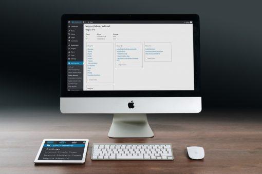 WP Site Importer Screen Shot Import Menus